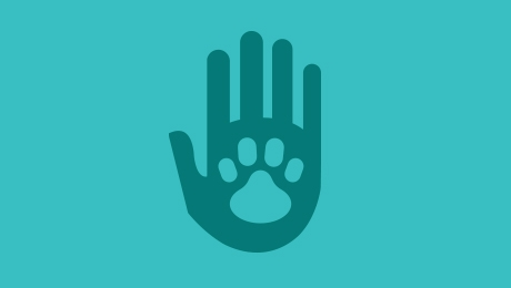 Blue hand and paw icon