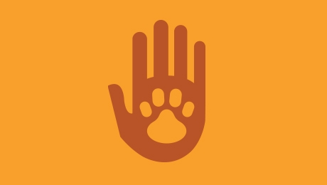 Orange hand and paw icon