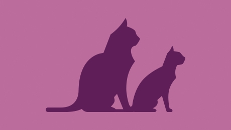 Two purple cats logo